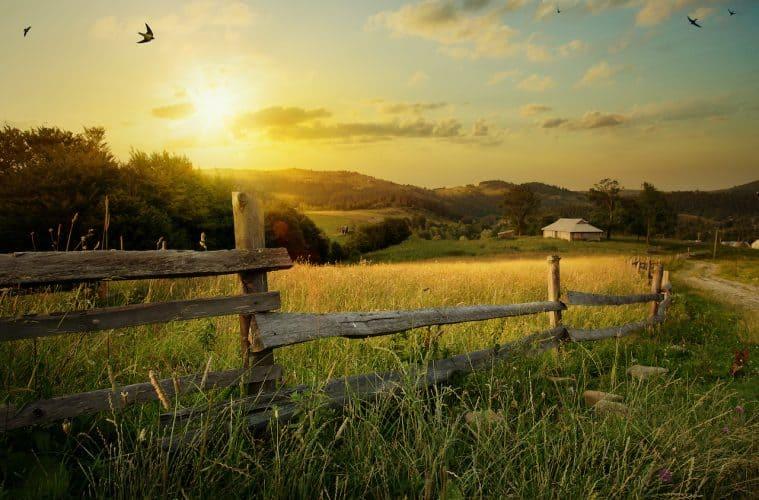 Coworking als Perspektive für ländliche Regionen